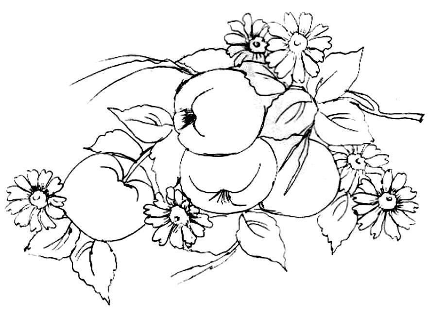 http://www.blancodesigns.com.br/riscos_desenhos/alimentos/risco_vaso-frutas-pintar2-g.jpg